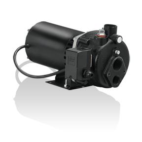 Blue Angel CBS100 - 1 HP Cast-Iron Convertible Well Jet Pump