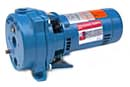 Goulds J Plus-Convertible Jet & Shallow Well Pumps