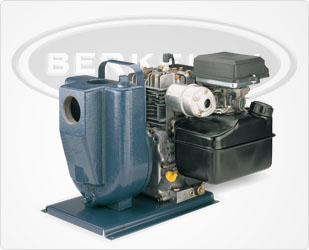 Berkeley EEDDH Engine-Driven Self-Priming Pump Series