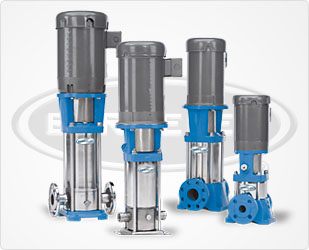 Berkeley BVM(I/X)4 Vertical Multi-Stage Pumps
