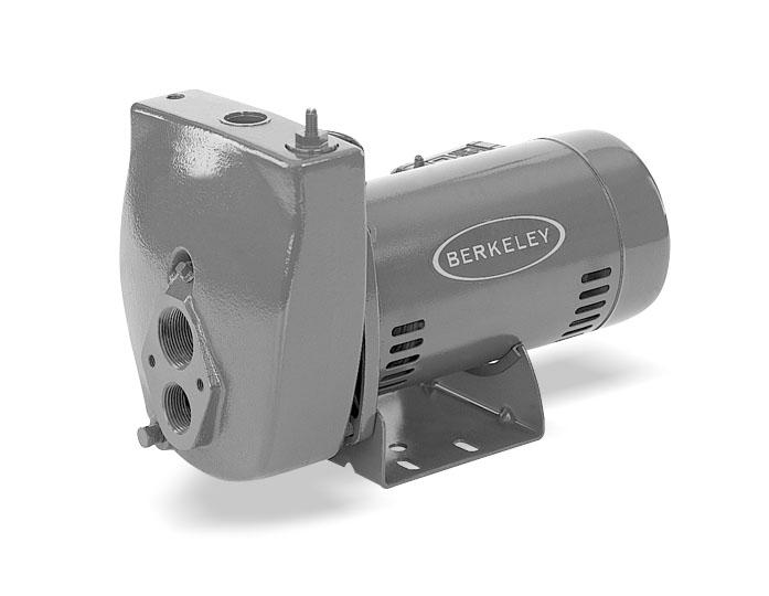 Berkeley 15SL 1 1/2 HP Deep Well Series Pumps