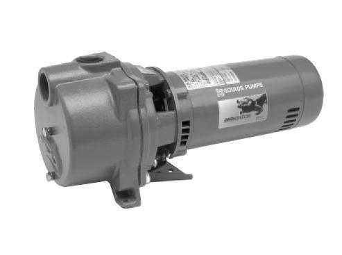 Goulds Self-Priming Centrifugal Pump - 60 Hz GT153
