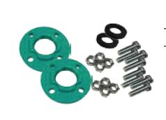 Wilo 2 in. FNPT Flange Kit