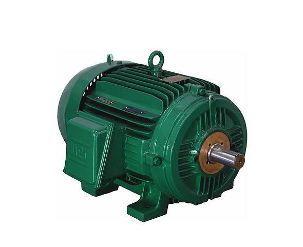25012st3qie586 7 weg motors ieee 841 petrochem motor for Weg nema premium motors
