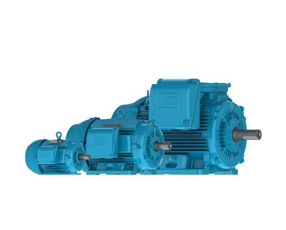 40018ep3gkd580z W22 Weg Motors Three Phase W22 Crusher